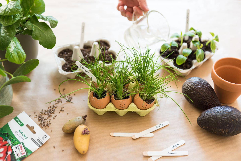 Activités enfants, jardiner à la maison