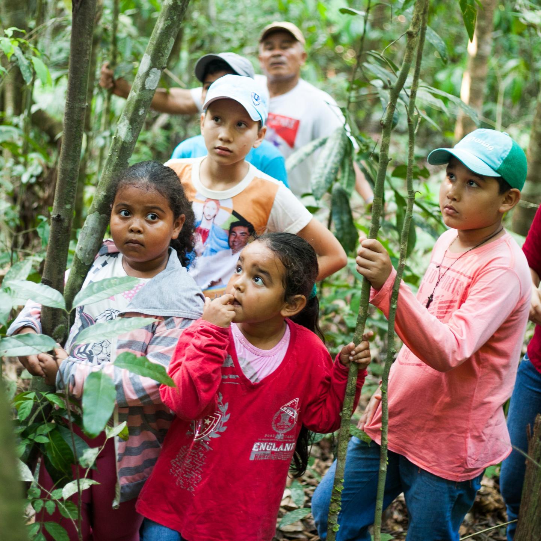 Passation, amazonie, habitants de Tome Açu , transmission