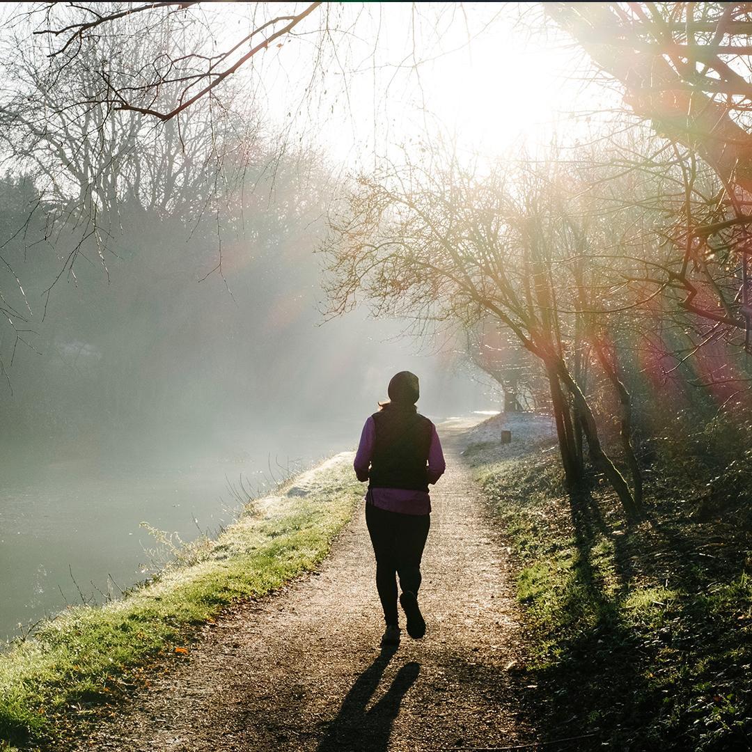jogging, bouger, promenade en forêt